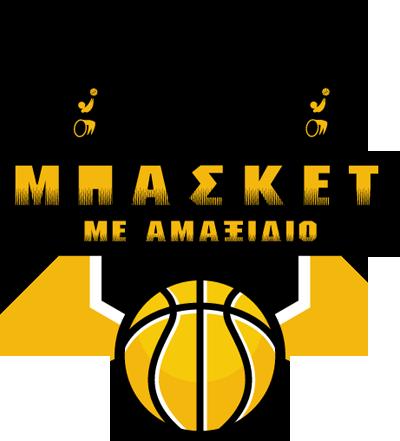 Wheelchair-for-basketball