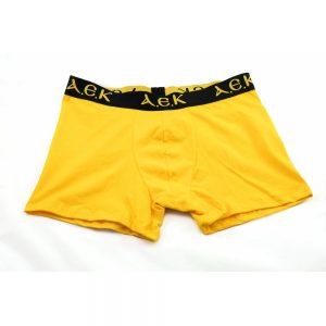 ΑΝΔΡΙΚΑ ΜΠΟΞΕΡ ΑΕΚ (κίτρινο)